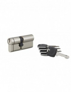 Cylindre hg6+ 31x41mm 5 clés panneton orientable