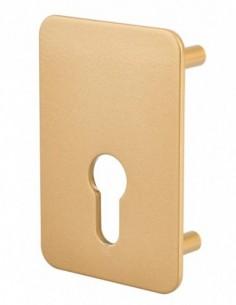 Plaque de renfort porte isoplane type capital à cylindre profilé, époxy bronze