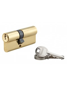 Cylindre 30 x 40 mm 3 clés avec vis de 50 mm laitonné