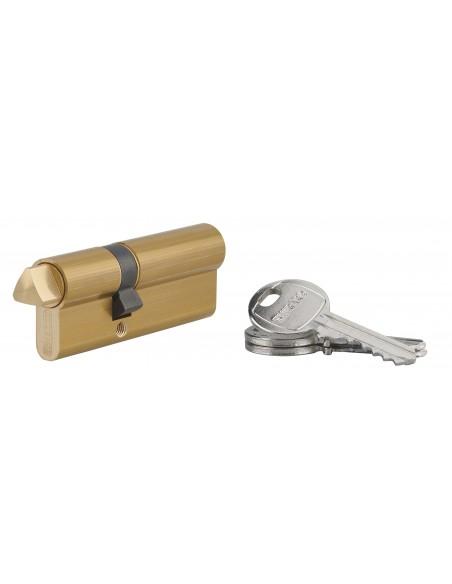 Cylindre profile hg 30x50 triangle externe 14 côté 30 3 clés laiton